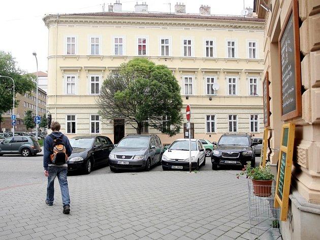 Otrávený jasan v Gorkého ulici.