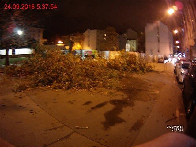 Následky silného větru v noci na pondělí.