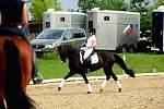 Účastnice loňské olympiády Katarzyna Milczareková s koněm Ekwador stejně jako loni opanovala víkendovou kvalifikaci Světového poháru v areálu brněnské Panské Líchy.