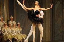 Royal Russian Ballet při představení Labutí jezero.