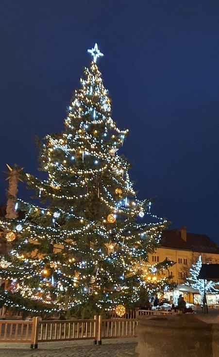 Vánoční strom ve Vyškově.