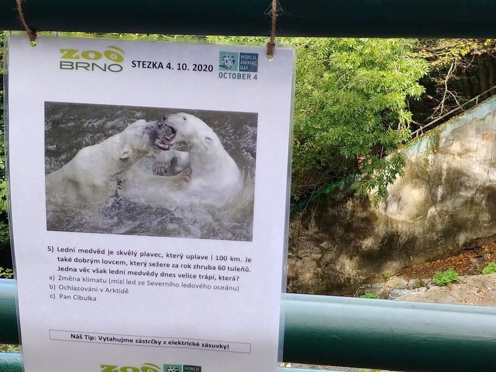 V brněnské zoo lidé oslavili Světový den zvířat.
