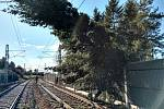 Kvůli silnému větru měla s provozem problém i Správa železnic.