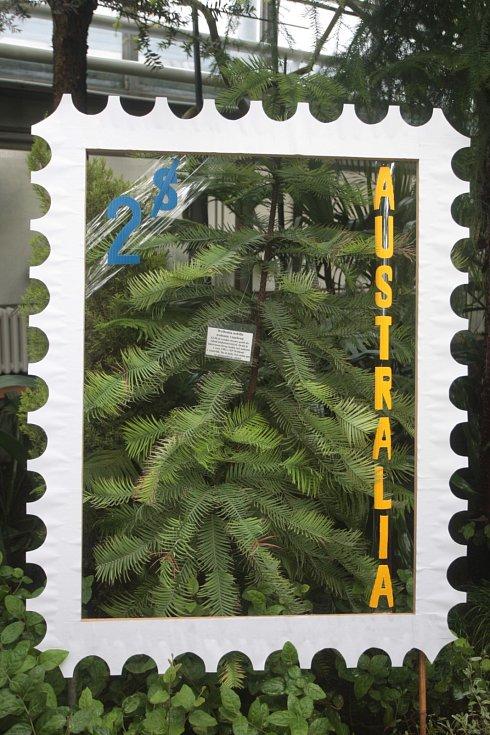 Brněnská botanická zahrada při Přírodovědecké fakultě Masarykovy univerzity ožila netradiční výstavou. Od soboty v ní začali vystavovat poštovní známky s květinovými motivy. Známky poněkud jiného druhu čekají ve sklenících.