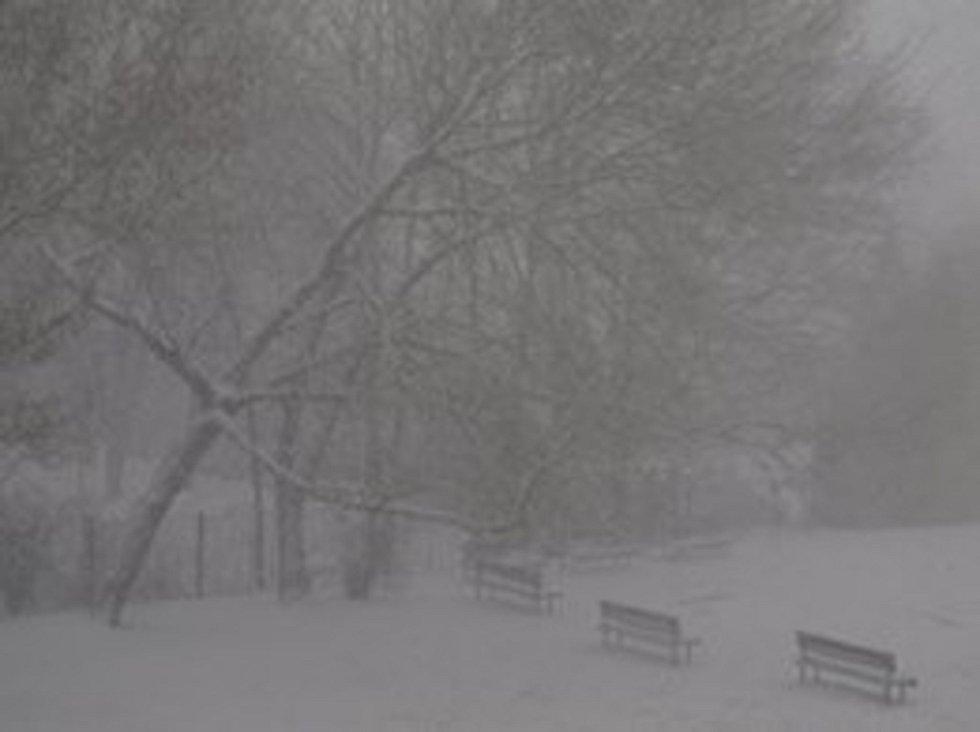 Sníh v Řečkovicích.