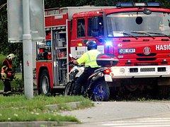 Na několik minut zablokovala ulomená větev Bystrckou ulici v brněnském Komíně.