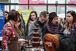 Čokoládový festival v Brně. Do Campus Square lákají na rozmanité lahůdky, recepty i vaření s čokoládou.