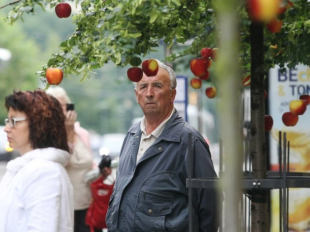 Zaměstnanci brněnské Newton College rozvěsili v brněnské Rašínově ulici jablka.
