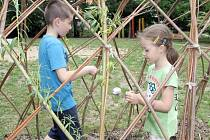 Bylinková a zeleninová zahrada, vrbičkový tunel nebo malé jezírko přibyly v zahradě Mateřské školy v Labské ulici v Brně.