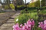 Botanická zahrada je otevřena a rozkvétá
