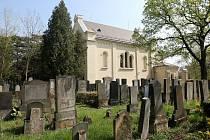 Nově opravený židovský hřbitov v Brně.