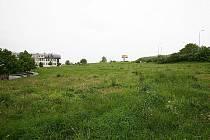 Místo, kde soukromá firma vykácela borový háj. Teď se v místě chystají postavit patrové bytovky.