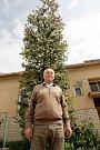 František Gale má u svého domu sedmimetrovou jabloň.