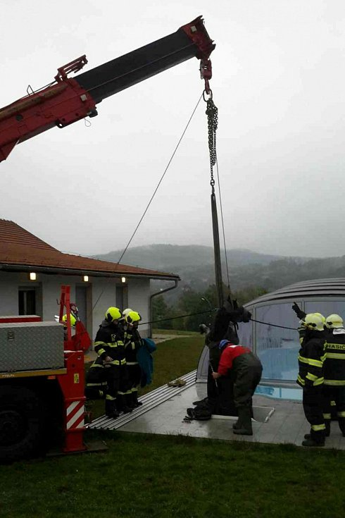 Hasiči a veterináři zachraňovali koně, který se v Lelekovicích na Brněnsku propadl do technologické šachty bazénu.