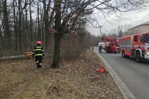 Silný vítr zaměstnal hasiče na celém území jižní Moravy.