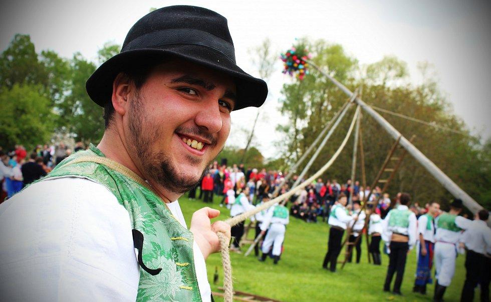 STAVĚNÍ MÁJE. Tradičním stavěním máje a folklorním programem odstartovala nová návštěvnická sezona ve strážnickém skanzenu.