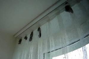 Netopýři v bytě na brněnském sídlišti Lesná.