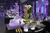 Galerie Vanieck hostila 30. března první ročník prestižní společenské akce Ples Jako Brno.