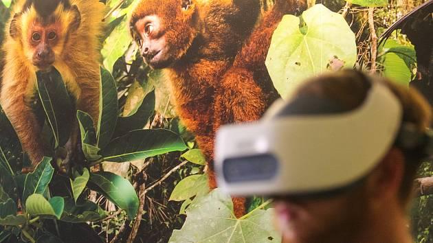 Týden ve fotografii: Virtuální realita v zoo i nová auta krajských policistů
