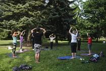 Uplynulý víkend v brněnských Lužánkách se nesl ve znamení jógy a hudby. Park totiž hostil první ročník festivalu Wonderpark, díky kterému se Brňané mohli zúčastnit šestnácti jógových lekcí a deseti koncertů.