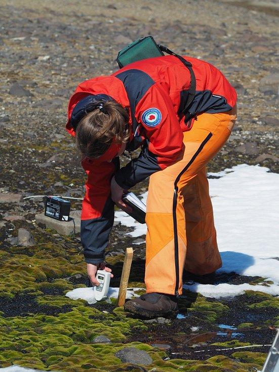 """Boty a termoprádlo vás prostě provázejí všude, bez nich by to v Antarktidě prostě nešlo. (Monitoring biologické aktivity ve zdejším """"pralese"""" – totiž v porostu nižších rostlin.)"""
