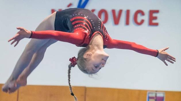 Týden ve fotografii: létající gymnastky nebo les zákazových značek v Brně