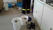 Hasiči likvidovali únik čpavku a dalších chemikálií na základní škole v Modřicích
