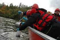 Hasičští chemici odebírali vzorky z brněnské přehrady.