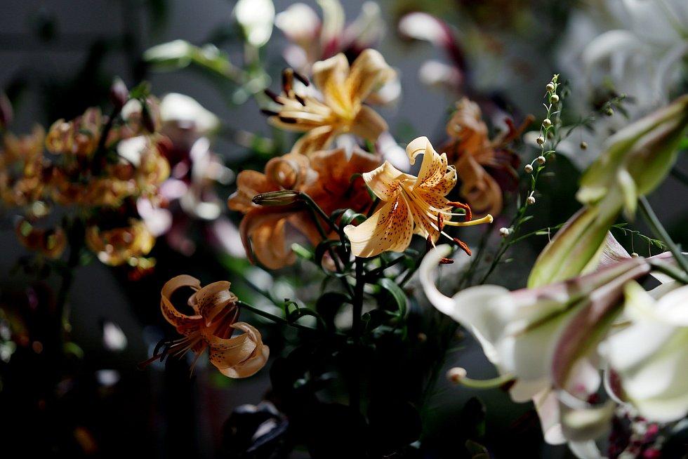 Sdružení Brno Lilium ve spolupráci s Benediktinským opatstvím Rajhrad zve všechny milovníky květin na ukázku pěstitelských úspěchů nejleších šlechtitelů lilií v ČR. Květinami rozkvetla chodba kláštera a kaple, kde se mohou návštěvníci pokochat stovkami ba