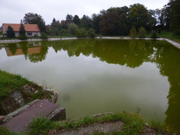 Rybník v Telnici.