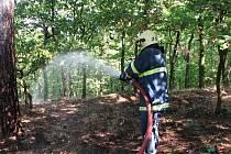 Ilustrační: Zásah při požáru lesa