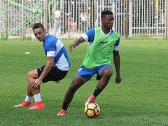 Alvin Fortes (vpravo) na tréninku Zbrojovky.