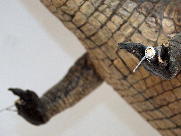 Poškozená tlapa brněnského draka.