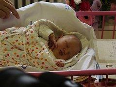 Prvním brněnským miminkem letošního roku je Darina Malíková. Narodila se v brněnské porodnici fakultní nemocnice na Obilním trhu.