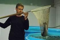 Pomoci v boji proti velkochovům lososů v evropských mořích, vyzkoušet unikátní vědecký projekt a nabídnout lidem na jižní Moravě čerstvé mořské ryby. S těmito cíli spustil majitel brněnské aukční síně Tomáš Zezula projekt Moře v Brně.