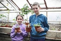 Příměstský tábor brněnského střediska volného času Lužánky nabízí dětem seznámení s kaktusy a rostlinami.