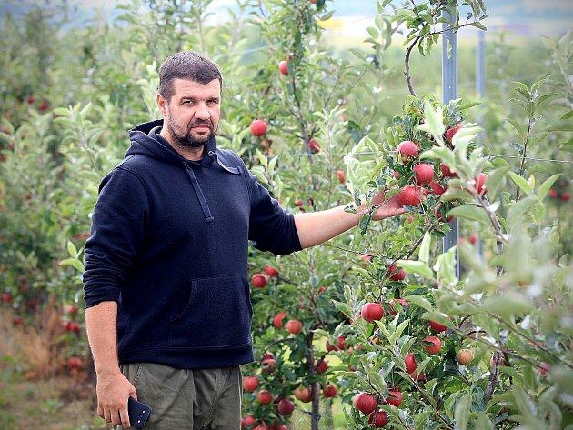 Sady ve Starém Lískovci mají pětačtyřicetiletou tradici. Za sezonu jejich zaměstnancům projde pod rukama až osm set tun konzumních jablek. Stroj na výrobu moštu jich za hodinu zpracuje až pět set kilo.