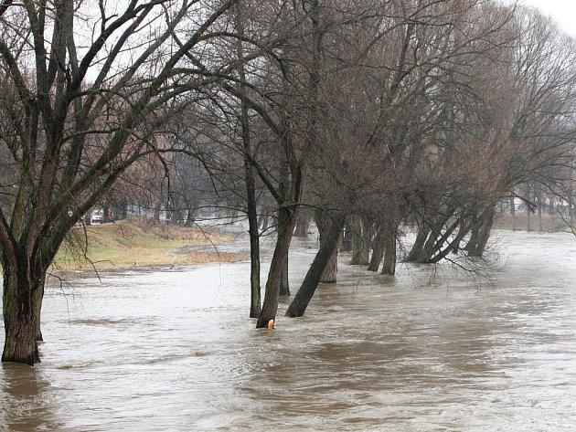 Řeka Svratka u Veverské Bítýšky.