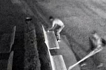 Mladí vandalové řádili v brněnských Denisových sadech. Poničili lavičky.