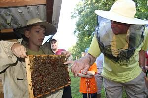 Stáčení medu. Ilustrační foto.