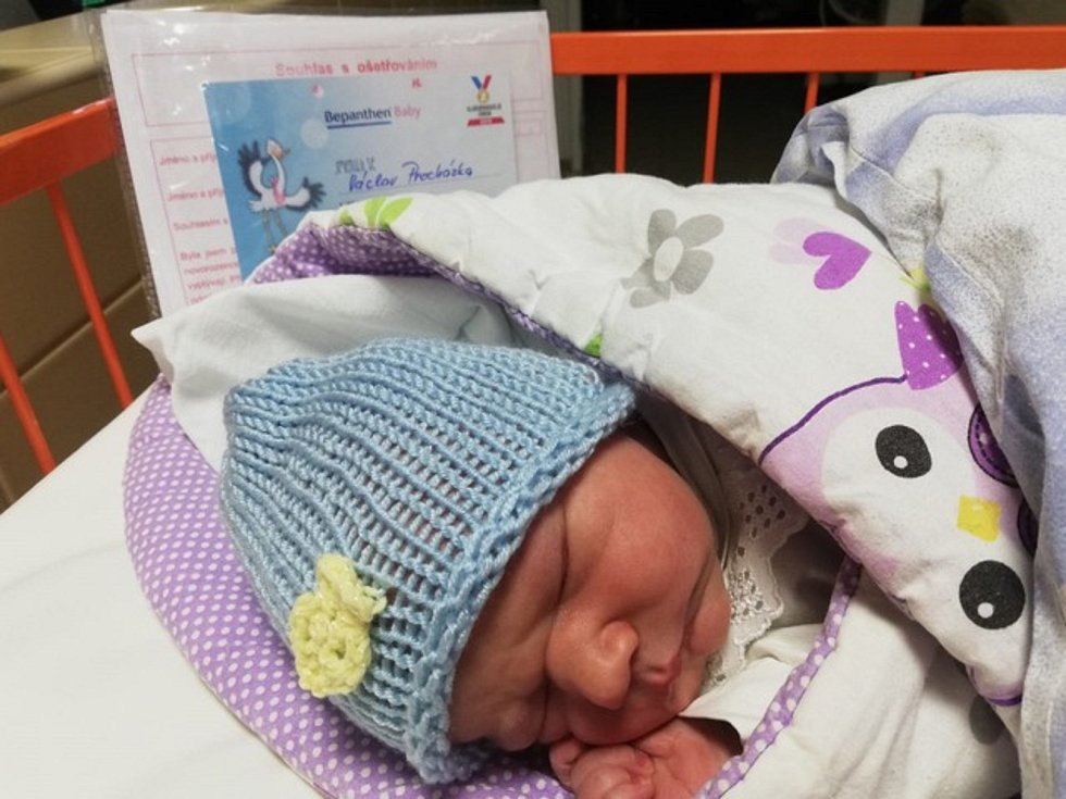 V uherskohradišťské nemocnici je letos prvním dítětem chlapec Václav Procházka.