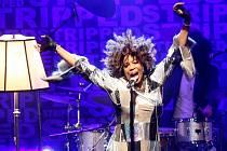 V brněnském Sono centru vystoupila americká R'n'B a soulová zpěvačka Macy Gray.