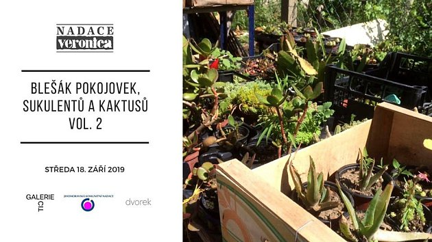 Květinový bleší trh vBrně - pozvánka