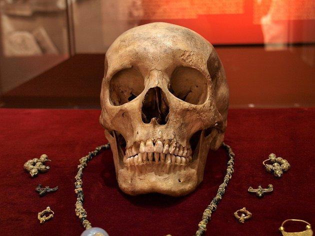 Novou expozici části výbavy hrobů z období Velké Moravy si návštěvníci můžou prohlédnout od středy až do čtvrtého prosince v brněnském Dietrichsteinském paláci.
