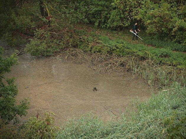Vandalové vypustili rybník. Bez deště by ryby v něm uhynuly.