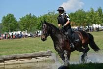 V brněnském areálu Panská Lícha se v sobotu konalo tradiční Mezinárodní policejní mistrovství v jezdectví. Zúčastnily se policejní týmy z osmi zemí.