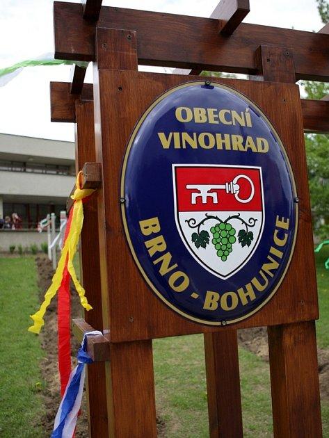 Slavnostní výsadba obecního vinohradu v brněnských Bohunicích.