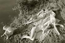 Přirozeně. Tak přirozeně, jak jen to je pro všechny zúčastněné možné. Karel Novák své snímky z nudistických pláží v galerii zatím nevystavoval, Jock Sturges, jehož fotografiemi se pyšní nejvýznamnější světové sbírky, zase nikdy u nás nevystavoval.