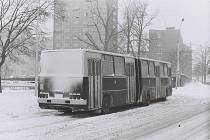 Vlna silných mrazů zasáhla Československo v roce 1985. V Brně bylo i minus třicet stupňů Celsia.