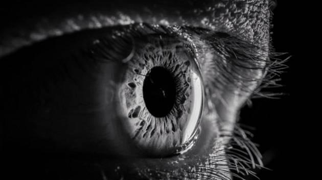 Šestnáctiletou Janu Madajovou baví makrofotografie.